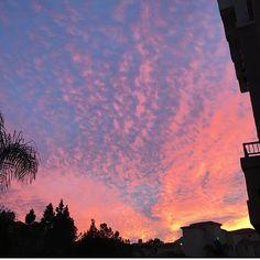 غروب پاييز بدون فيلتر☁️🎨🙌🏻🌅. #nofilter#sandiego#lajolla#gorgeous#sunset#cloudporn#beautiful#sky#happy#colorful#clouds#november#fall#SD#my#instadaily#instalike#goodvibes#moodnofilter#sandiego#lajolla#gorgeous#sunset#cloudporn#beautiful#sky#happy#colorful#clouds#november#fall#SD#my#instadaily#instalike#goodvibes#mood #lajollalocals #sandiegoconnection #sdlocals - posted by Taby  https://www.instagram.com/tabiyoli. See more post on La Jolla at http://LaJollaLocals.com