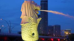 night-in-Merlion-Park-Singapore-tourism-destination,-Singapore