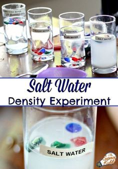 This super easy salt water experiment is the perfect science activity to teach kids about the density of salt and fresh water. Great for an ocean unit or a hands-on science activity for preschool, kindergarten and first grade! Science Activities For Kids, Teaching Science, Science For Kids, Stem Activities, Teaching Kids, Science Fun, Summer Science, Science Classroom, Physical Science