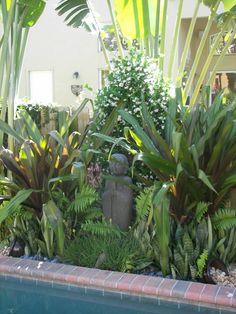Birds of Paradise, Queen Emma Crinum Lilys & Ferns
