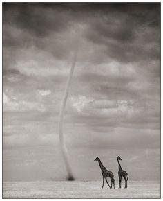 Africa..funnel cloud