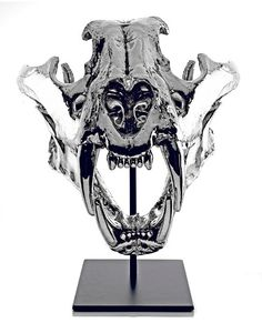 Nickel-Plated Replica Tiger Skull