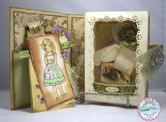 CARD-D-OLOGY: A Lady's Shadow Box Book Card - Stamp-N -Doodle Challenge