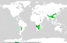 Una mappa del clima sinico