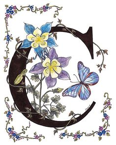 C for Columbines and Butterfly by Constance Widen