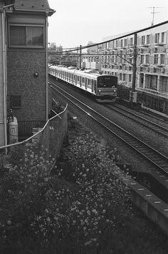 電車 (The train)