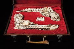 Bone sculptures by Mahalski - DuellingSet