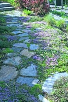 Super Flagstone Patio Garden Ideas, Check Now - . - Super Flagstone Patio Garden Ideas, Check Now – … # awesome - Garden Stones, Garden Paths, Amazing Gardens, Beautiful Gardens, Beautiful Space, Beautiful Pictures, Path Ideas, Walkway Ideas, Fence Ideas