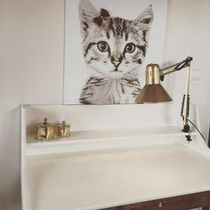 Vida ønska seg katt,så da blei det katt....på veggen i allefall rommet tar form litt og litt for kvar dag! #groovymagnets #magnettapet #woroom #jenterom