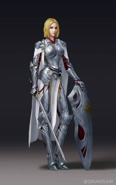 plate armor, shield, sword, warrior, fighter, knight