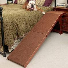 For pets needing help to access a bed, the super convenient and innovative Pet Bed Ramp is the perfect solution. Specially designed with a high platform and gentle climbing angle, the ramp makes it easy for your pet to get in and out of bed. Dog Ramp For Bed, Pet Ramp, Dog Wheelchair, Cheap Pets, Kitten Care, Pet Insurance, Insurance Companies, Queen, Pet Beds