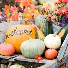 Stylish Ways to Add Pumpkins and Gourds into Your Fall Wedding Décor