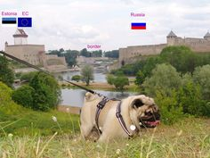 Valli stands on the background of the border of the European Union and Russia http://europug.eu/europug-stands-border/