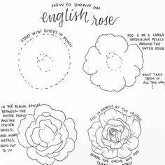 How to draw easy and amazing bullet journal doodles! how to doodle tutorials including flower doodles, animal doodles and much more! Easy Flower Drawings, Easy Disney Drawings, Pencil Drawings Of Flowers, Easy Doodles Drawings, Flower Drawing Tutorials, Flower Sketches, Cute Drawings, Draw Flowers, How To Draw Peonies