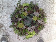 Succulent wreath. Easy to make and maintain.