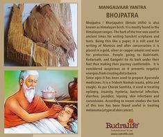 Vedic Mantras, Hindu Mantras, Vedas India, Hinduism History, History Of India, Ancient Indian History, Cool Science Facts, Hindu Rituals, Hindu Culture