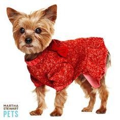 Lightweight and lovely, the Martha Stewart Pets sweater dress is a great fall/winter combination for your little princess! #dogsweater