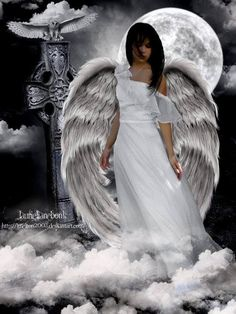 Musta been an angel in my life! Angels Among Us, Angels And Demons, Male Angels, Black Angels, Guerrero Dragon, I Believe In Angels, Ange Demon, Angel Pictures, Angels In Heaven
