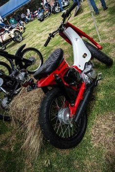 Honda cub Honda Motorbikes, Honda Cub, Mini Bike, Motorcycle Bike, Cool Bikes, Ducati, Bobber, Cars And Motorcycles, Cubs