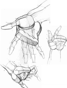 Drawing The Hand Different Position