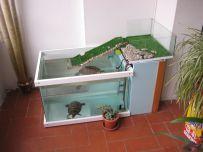 Aquariums Interior Design With Glass Fish Tanks 229