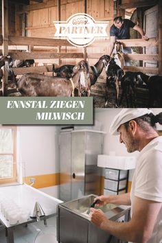 Beim #Gesäusepartner Milwisch, da arbeiten auch die Ziegen fleißig mit. Raus kommen #Ziegenmilch und #Ziegenkäse vom Feinsten. #steiermark #österreich #gesäuse #gibtkraft Foto: Stefan Leitner Goat Milk