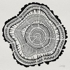 Tree Rings – Black on White