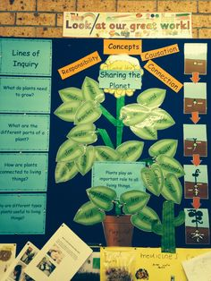 Purposeful Plants - Lines of inquiry