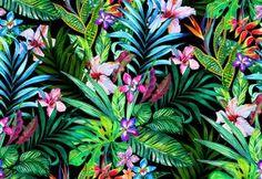 Midnight tropicals by Elena Belokrinitski on Behance