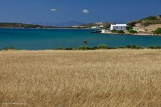 Paros Paros Greece, Paros Island, Greek Islands, Places To See, Spaces, Mountains, Amazing, Photos, Photography