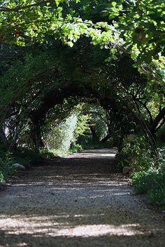 Temenos Gardens
