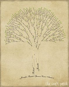 family tree drawing - love it!