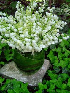 Lily of the Valley for the last day of May! One of my favorite images from Carolyne Roehm... And from her most recent post... ...