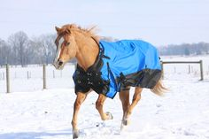 Tough 1® Super Tough 1680D Waterproof Poly Turnout Blanket with Snuggit™ Neck