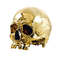 24 Karat Gold Human Skull - WELCOME TO A WORLD OF SKULLSWELCOME TO ...