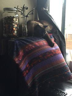 The warmest spot in the house http://ift.tt/2hTe8sg