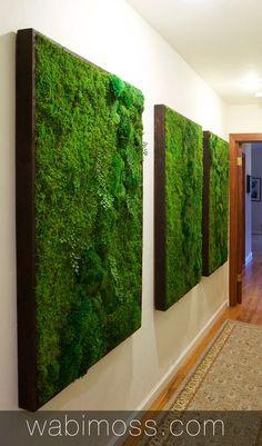 Green wall Interior - Moss Wall Artwork for Interior Designers. Moss Wall Art, Moss Art, Building A Pergola, Diy Pergola, Gazebo, Living Room Green, Living Walls, Walled Garden, Pergola Designs