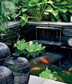 modern-backyard-waterfalls-with-koi-pond.jpg (1161×1357)