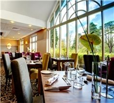 #Christmas - Woodland Grange Conference Centre - http://www.venuedirectory.com/venue/3111/woodland-grange-conference-centre/christmas/parties  #Christmas time means get-togethers where fun and laughter meet luxury food and maybe a spot of overeating…  Clink your glasses to the 2014 festive season with a private event at this #venue. This venue can bespoke your #yuletide experience with creative menus, themed event spaces and flawless, warm service exclusively for you and your guests.