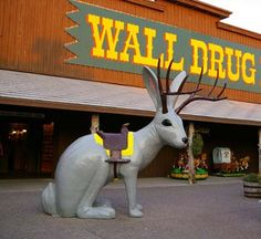 Wall Drug in South Dakota was one of the quirkiest places we saw when we took a drive across the country to Mt. Rushmore a few years ago.  I lost count of how many freeway signs we saw for this place as we drove across the state.  Definitely worth the stop!