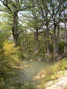 Austin Texas area
