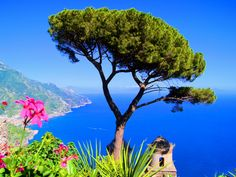 The Amalfi Coast and Its Towns The blue of the sea, the green of the Mediterranean maquis and the hues of citrus fruits spreading out over terraced cultivations blend with the typical architecture in order to create one of the most beautiful itineraries in Italy: the Costiera Amalfitana (the Amalfi Coast).