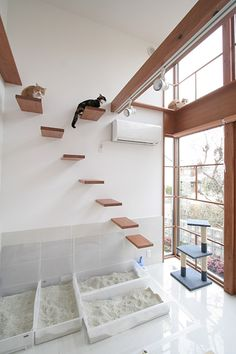 cat room a minimalist cat climber with several platforms, a cat scratcher and several litter boxes for kitties Animal Room, Hotel Gato, Cat Hotel, Cat Tree Designs, Cat Climber, Cat House Diy, Diy Cat Toys, Homemade Cat Toys, Cat Playground