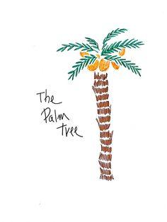야자수 코코넛나무
