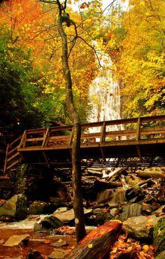 mingo falls cherokee North Carolina