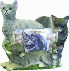 EandS Pets 35297-11 Large Cat Frames ** Visit the image link more details. (This is an affiliate link and I receive a commission for the sales)