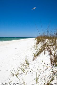 The pure white sands of Shell Island in PCB. #PCBeachBucketList
