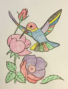 Hummingbird Bird And Flowers Adult ColoringColoring Books365