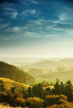 Stunning Countryside, Rolling Hills, Near Napier, Hawkes Bay,North Island, New Zealand..