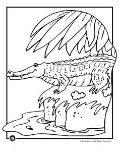 florida snake coloring pages | corn snake or red rat snake color ... - Alligator Clip Art Coloring Pages